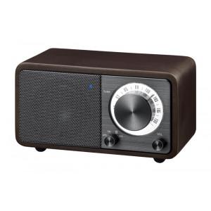 SANGEAN Mini Bluetooth Speaker with FM Radio
